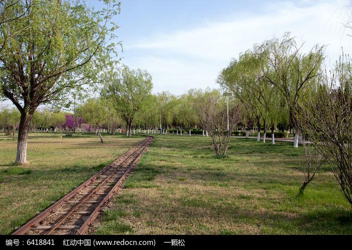 公园中观光小火车轨道图片