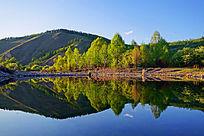湖泊金色的树林