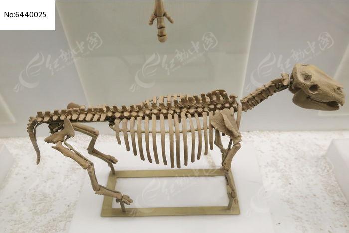 包骨架图片装修效果图