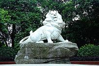 睡醒的亚洲雄狮
