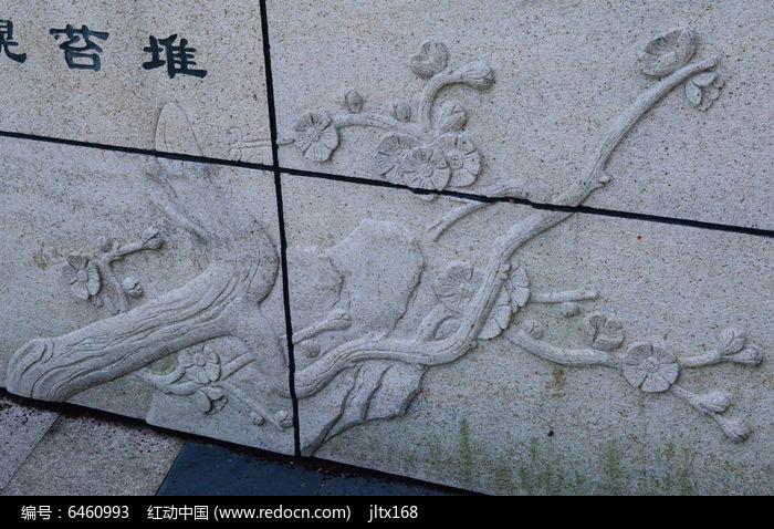 梅花的浮雕图片