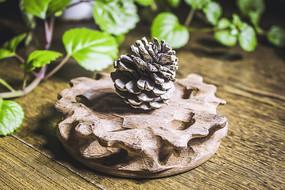 木质茶垫上的小松果