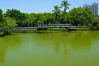 湖上的曲桥