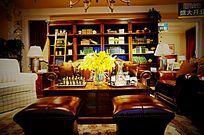 皮质沙发和客厅
