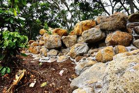 石头景观园林
