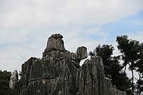 石林风景区的寿龟托仙石