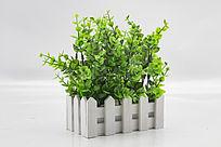 塑胶绿色植物装饰品