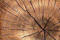 裂缝了的木头