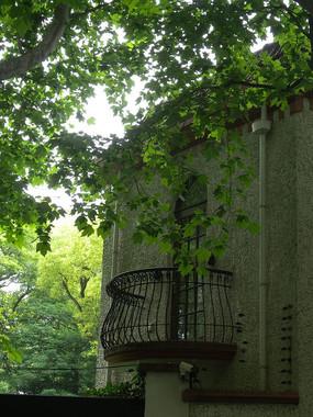 罗密欧的小阳台