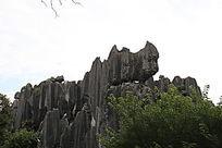 石林犀牛石