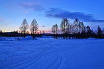 雪原树林暮色