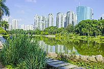 深圳大学景色