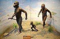 南猿脚印复原场景