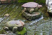 石雕 水中蛙与龟