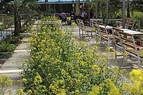 休闲观光花棚