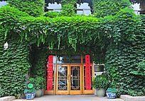 贴着对联的门与满墙的绿植