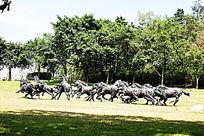 奔驰的马群