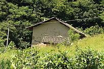 农村的老房子