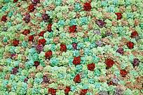 浅绿色多种花背景