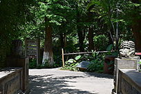 园林一角摄影