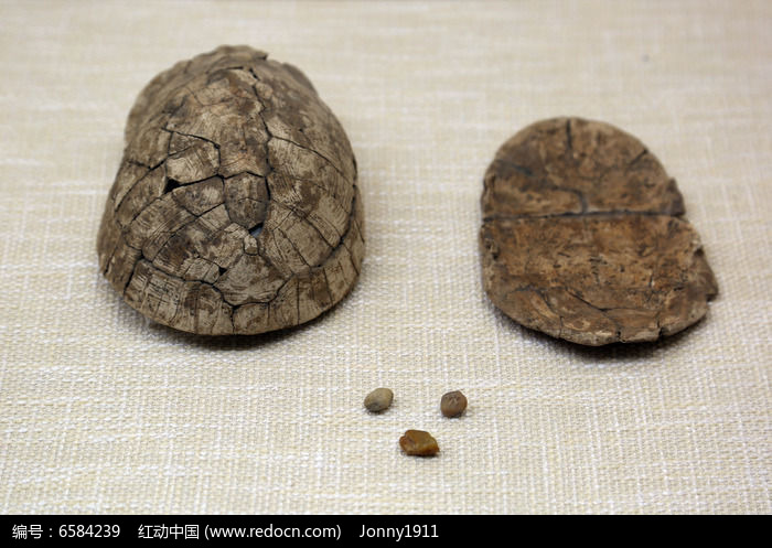 新石器时代龟甲响器附石子