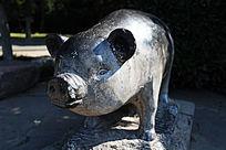 石雕生肖猪