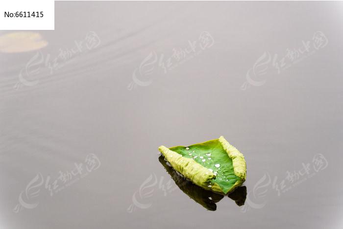 荷叶上的水珠图片
