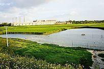 农田池塘风景