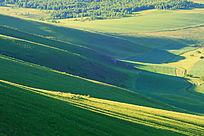 山地农田风景