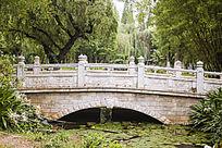 垂柳下的白色桥梁