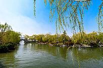 大明湖公园一角