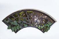 扇形窗户和绿植