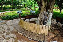 植物园景观