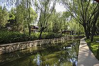 公园里的河道及两岸树木