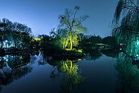 夜晚大明湖公园树木倒影
