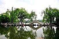 北京紫竹院公园