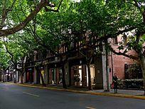 绿树下的民国建筑