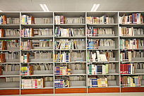 满书架的书
