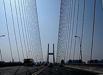 上海南浦大桥拉索钢索