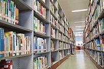 在图书馆学习的人