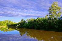 河流绿树林