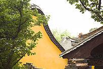 树木背后的寺庙一角