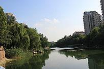 潍坊张面河摄影照片