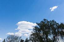 羽毛状云朵