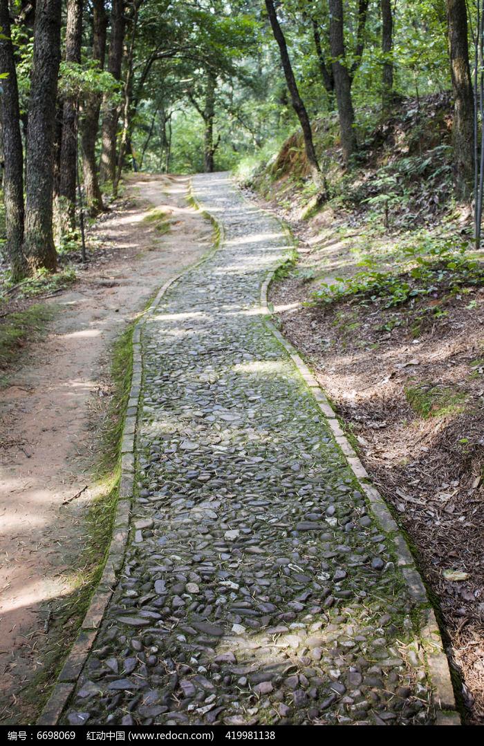 林间的石子小路图片,高清大图_道路交通素材