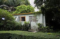 公园内植物丛中的公厕