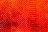 红色纹理背景图