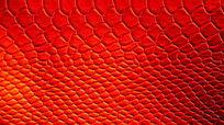 红色压纹图片