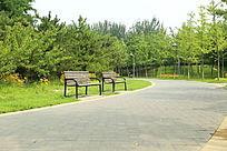森林公园道路旁的公共座椅
