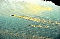 橡皮艇江面训练